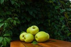 Πράσινο μήλο στο χωριό Στοκ Εικόνες