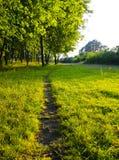 πράσινο μονοπάτι Στοκ Εικόνες