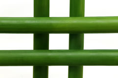 Πράσινο μπαμπού πέρα από το άσπρο υπόβαθρο Στοκ φωτογραφία με δικαίωμα ελεύθερης χρήσης