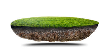 Πράσινο νησί χλόης ελεύθερη απεικόνιση δικαιώματος