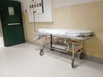 πράσινο νοσοκομείο σπορείων λίγη μητέρα κοντά στο νεογέννητο s Στοκ Εικόνα