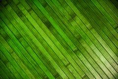 Πράσινο ξύλινο παρκέ στοκ φωτογραφίες