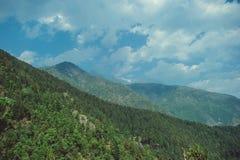 Πράσινο ξύλο στα himalayan βουνά ενός υποβάθρου και τα άσπρα σύννεφα Στοκ εικόνα με δικαίωμα ελεύθερης χρήσης