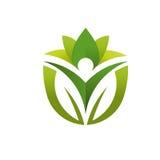 Πράσινο λογότυπο φύλλων και υγειονομικής περίθαλψης Στοκ Εικόνα