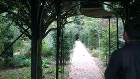 Πράσινο πάρκο λαβυρίνθων στοκ εικόνα