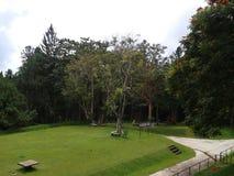 Πράσινο πάρκο παιχνιδιού πάρκων φύσης Στοκ Εικόνα
