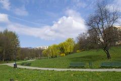 Πράσινο πάρκο στη κατοικήσιμη περιοχή Στοκ φωτογραφία με δικαίωμα ελεύθερης χρήσης