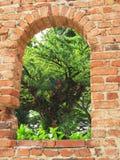 πράσινο παράθυρο Στοκ Εικόνα