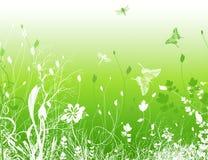 Πράσινο πεδίο απεικόνιση αποθεμάτων