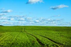 Πράσινο πεδίο άνοιξη Στοκ Εικόνα