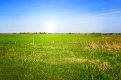 Πράσινο πεδίο χλόης και φωτεινός μπλε ουρανός Στοκ εικόνες με δικαίωμα ελεύθερης χρήσης