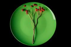 Πράσινο πιάτο και κόκκινα μούρα στοκ εικόνες