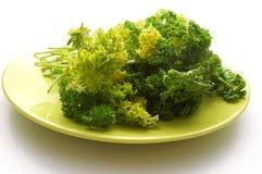 πράσινο πιάτο μαϊντανού Στοκ φωτογραφία με δικαίωμα ελεύθερης χρήσης