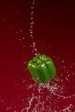 Πράσινο πιπέρι στο κόκκινο υπόβαθρο Στοκ Φωτογραφία