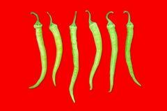 Πράσινο πιπέρι τσίλι σε μια σειρά Στοκ Φωτογραφίες