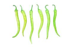 Πράσινο πιπέρι τσίλι σε μια σειρά Στοκ Εικόνες