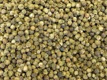 πράσινο πιπέρι Στοκ εικόνα με δικαίωμα ελεύθερης χρήσης