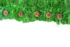 Πράσινο πλαίσιο Χριστουγέννων με τις βελόνες πεύκων στοκ εικόνα με δικαίωμα ελεύθερης χρήσης