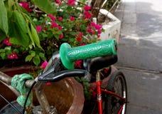 Πράσινο ποδήλατο λαβών στοκ φωτογραφίες