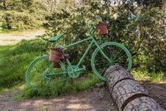 Πράσινο ποδήλατο που σταθμεύουν σε έναν κορμό του δέντρου στοκ εικόνες