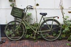 Πράσινο ποδήλατο στο Άμστερνταμ Στοκ Εικόνες