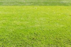πράσινο ποδόσφαιρο πεδίων Στοκ Εικόνα