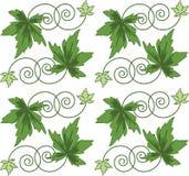 πράσινο πρότυπο φύλλων αριθμού άνευ ραφής Στοκ Εικόνα