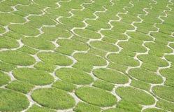 πράσινο πρότυπο χλόης εκσ&tau στοκ φωτογραφία