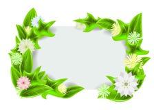 Πράσινο πλαίσιο με τα λουλούδια Στοκ εικόνα με δικαίωμα ελεύθερης χρήσης