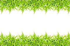 πράσινο πλαίσιο χλόης που απομονώνεται στο άσπρο υπόβαθρο Στοκ φωτογραφία με δικαίωμα ελεύθερης χρήσης