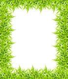 πράσινο πλαίσιο χλόης που απομονώνεται στο άσπρο υπόβαθρο Στοκ φωτογραφίες με δικαίωμα ελεύθερης χρήσης