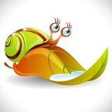πράσινο σαλιγκάρι φύλλων Στοκ Φωτογραφία