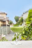 πράσινο σπανάκι καταφερτζήδων Στοκ Εικόνες