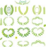 Πράσινο στεφάνι και ευθύ φύλλο Laurels και floral διανυσματική απεικόνιση