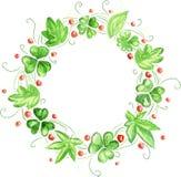 Πράσινο στεφάνι Watercolor Στοκ Εικόνες