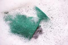 Πράσινο σφουγγάρι στην άσπρη φυσαλίδα Στοκ Εικόνες