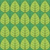 Πράσινο σχέδιο φύλλων Στοκ φωτογραφία με δικαίωμα ελεύθερης χρήσης