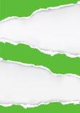 Πράσινο σχισμένο υπόβαθρο εγγράφου Στοκ φωτογραφία με δικαίωμα ελεύθερης χρήσης
