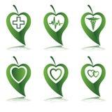 πράσινο σύμβολο φύλλων κα Στοκ Εικόνες