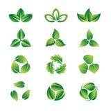 Πράσινο σύνολο εικονιδίων φύλλων Στοκ εικόνες με δικαίωμα ελεύθερης χρήσης