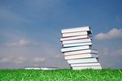 πράσινο σύνολο χλόης βιβλ Στοκ φωτογραφίες με δικαίωμα ελεύθερης χρήσης