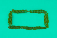 Πράσινο τετραγωνικό στεφάνι Στοκ φωτογραφίες με δικαίωμα ελεύθερης χρήσης