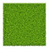 Πράσινο τετραγωνικό υπόβαθρο χλόης Στοκ Εικόνες