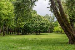 πράσινο τοπίο ανασκόπησης Στοκ φωτογραφία με δικαίωμα ελεύθερης χρήσης
