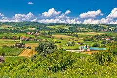 Πράσινο τοπίο καλλιεργήσιμου εδάφους επαρχίας στην Κροατία Στοκ φωτογραφίες με δικαίωμα ελεύθερης χρήσης