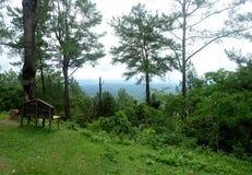 Πράσινο τοπίο με τον όμορφο μπλε ουρανό στοκ φωτογραφία με δικαίωμα ελεύθερης χρήσης