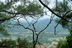 Πράσινο τοπίο με τον όμορφο μπλε ουρανό στοκ φωτογραφία