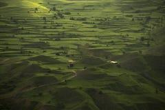 Πράσινο τοπίο με τους τομείς βουνών στοκ φωτογραφίες με δικαίωμα ελεύθερης χρήσης
