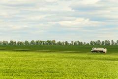 Πράσινο τοπίο με το άσπρο φορτηγό ρυμουλκών δεξαμενών στοκ φωτογραφίες