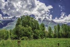 Πράσινο τοπίο με το χιόνι στα βουνά, το μπλε ουρανό και τα χνουδωτά σύννεφα Στοκ Εικόνες